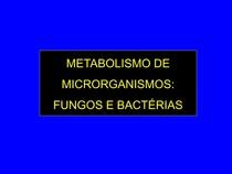 Aula 7   Metabolismo fungos e bactérias