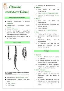 Resumo - Enterobius vermiculares