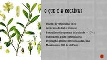 Cocaína - Uma Droga Estimulante do SNC