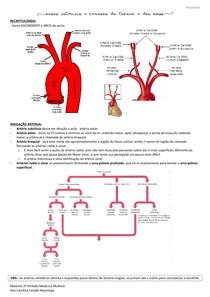 Resumo aula 2 - Vasos arteriais e venosos do tronco e do MMSS