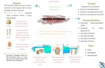 MAPA MENTAL - Sistema Articular