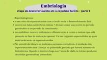 embriologia - desenvolvimento até a expulsão do feto