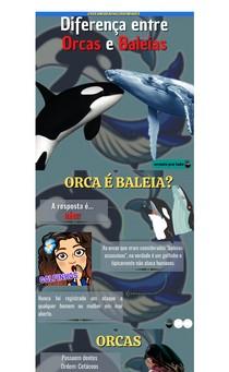 Diferença entre Orca e Baleia. Orca é baleia?