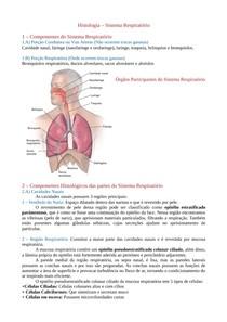 Histologia do Sistema Respiratório