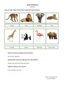 Zoo Animals (Gabarito)