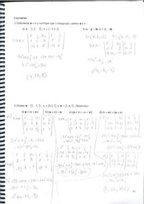 Respostas Vetores, Poduto Vetorial e Equações Paramétricas da Reta - Polígrafo 2015