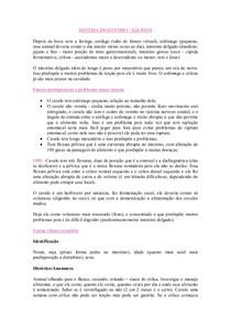 RESUMO DE GRANDES (EQUINOS)