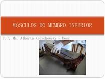 9) ANATOMIA (Músculos do membro inferior)