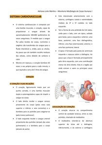 Sistema Cardiovascular - Resumo