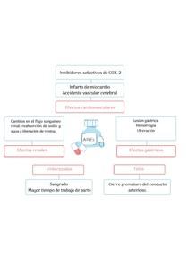 MAPAS - Antiinflamatorios no esteroides (AINEs)