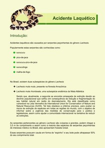 Acidente Laquético (Epidemiologia, Veneno, Diagnóstico, Tratamento)