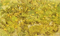 Vincent Willem van Gogh  - A Field of Yellow Flowers