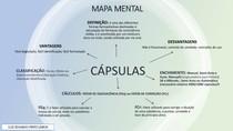 MAPA MENTAL - CÁPSULAS - LUIZ EDUARDO PINTO LISBOA