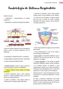 embriologia do sist resp