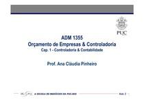ADM 1355 - Aula 02 Ana Cláudia - CAP 1