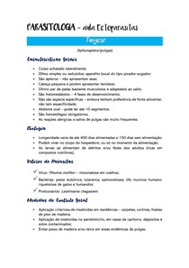 Resumo Parasitologia - Ectoparasitas - Tungose (pulgas)