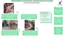 PROCEDIMENTO OPERACIONAL PADRONIZADO DE FOLHOSOS