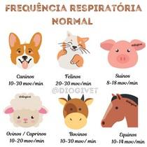 Frequencia Respiratória dos Animais