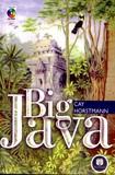 Livro Big Java