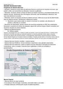 RESUMO NEUROANATOMIA P1
