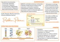 Peptídeos e Proteínas - Mapa Mental