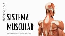 Anatomia do Sistema Muscular