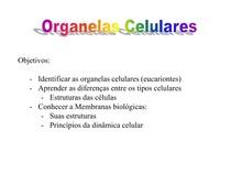A1 Organelas Celulares E Estrutura Da Membrana Plasmática Bi