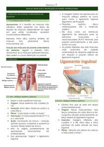 Músculos e inervação da parede anterolateral do abdome