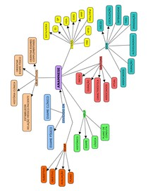 Mapa Conceitual - Anamnese