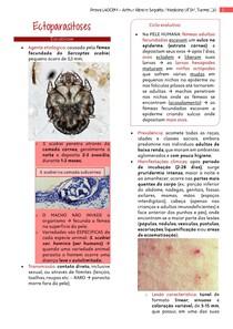 Ectoparasitoses