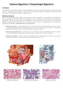 3 - Sistema Digestório