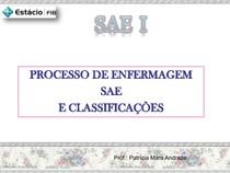 2 PROCESSO DE ENFERMAGEM
