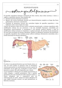 Histologia do sistema reprodutor feminino