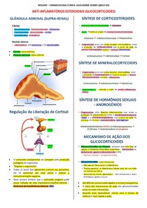 Anti-Inflamatórios Esteroidais