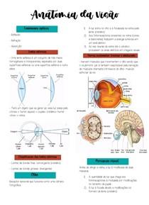 Anatomia da visão- RESUMO