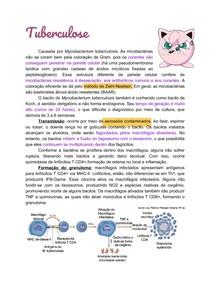Resumo de Microbiologia - TB, Hanseníase, DSTs e Meningite