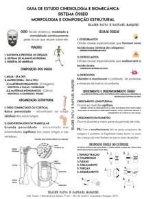 4 - CINESIOLOGIA E BIOMECÂNICA - SISTEMA ÓSSEO - PROF RAPHAEL