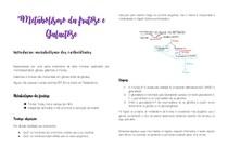 Metabolismo da galactose e frutose