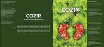 1ª edição   COZIR