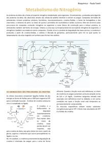 Resumo_Metabolismo do Nitrogênio