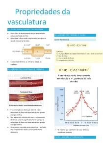propriedades da vasculatura