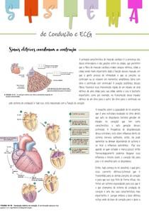 sistema de condução e ECG