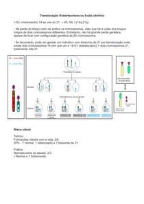 Translocação Robertsoniana ou fusão cêntrica