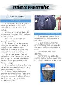 Aplicação Clínica - Timpanismo e Retículo Peritonite Traumática