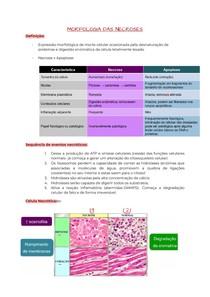Morfologia de Necrose e Pigmentos patológicos