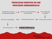 PRINCIPAIS EVENTOS DE UM PROCESSO HEMORRÁGICO