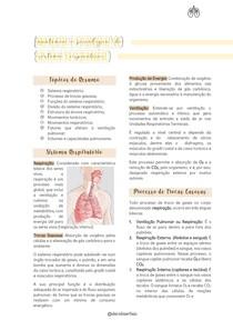 Anatomia e Fisiologia do Sistema Respiratório (Resumo Digitado)