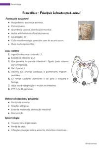 Parasitologia -Parascaris equorum