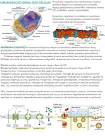 Introdução à Citologia e Biologia Celular