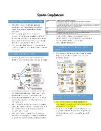 Sistema Complemento